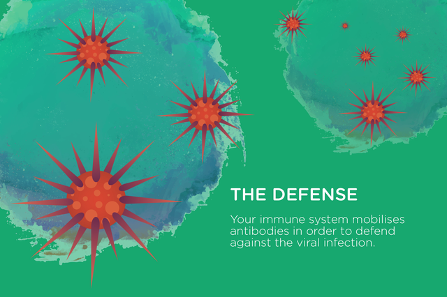 The Defense | How the Common Cold Works | Hippo.co.za
