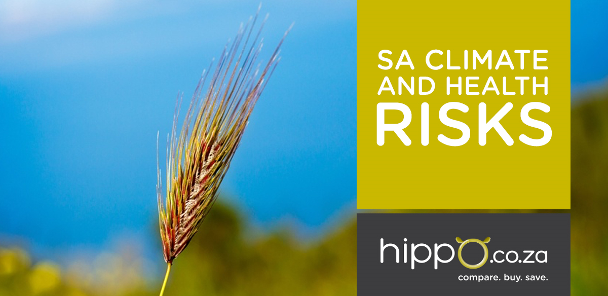 SA Climate and Health Risks