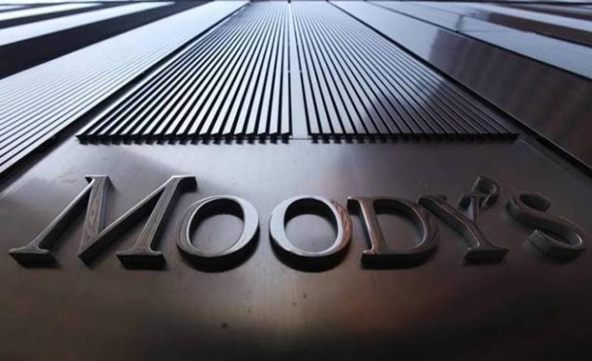 Moody's Investors Service | Business Insurance | Hippo.co.za