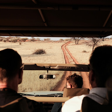 Travellers being driven on a SUV during a game drive, while overlooking bush and dirt road ahead.