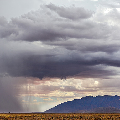 A striking image of grey Namibian skies covering dry desert shrubs, with a mountain on the side.
